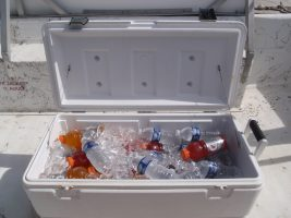 Best Ice Chests and Coolers