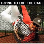 trying to exit the cage