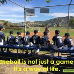 youth baseball team meme