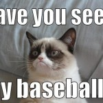 have you seen my baseball angry cat meme