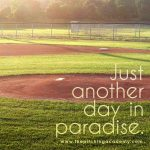 just another day in paradise baseball field meme
