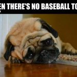 no baseball today dog meme