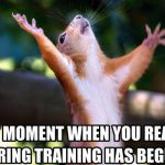 baseball spring training squirrel meme