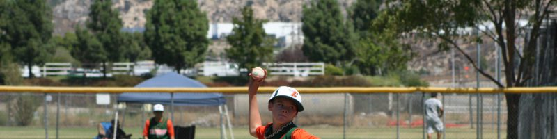 Experts are Warning of More Injuries in Youth Baseball