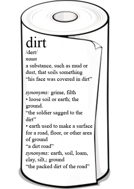 dirt definition on paper towels