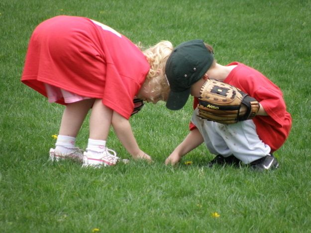 baseball kids picking grass