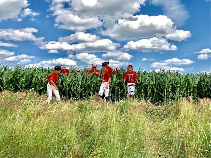 baseball players in corn field