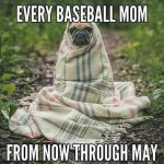 every baseball mom from now through may