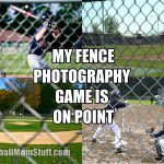 my fence photography game is on point