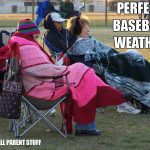 perfect baseball weather meme