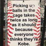 picking up balls in the cage baseball meme