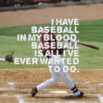 i have baseball in my blood motivational baseball quote